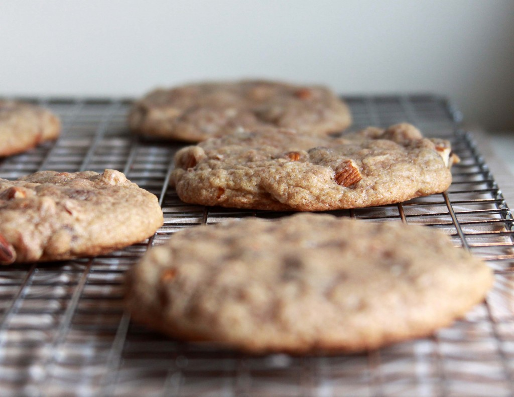 ... cookies salted dark chocolate espresso cookies dark chocolate espresso