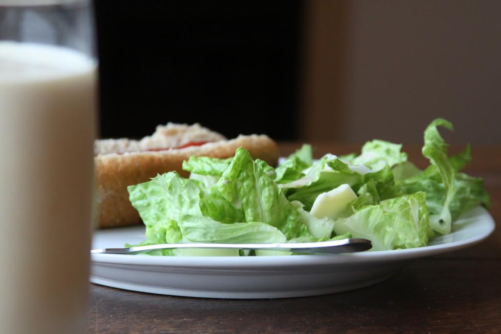 salad_shot2011_03