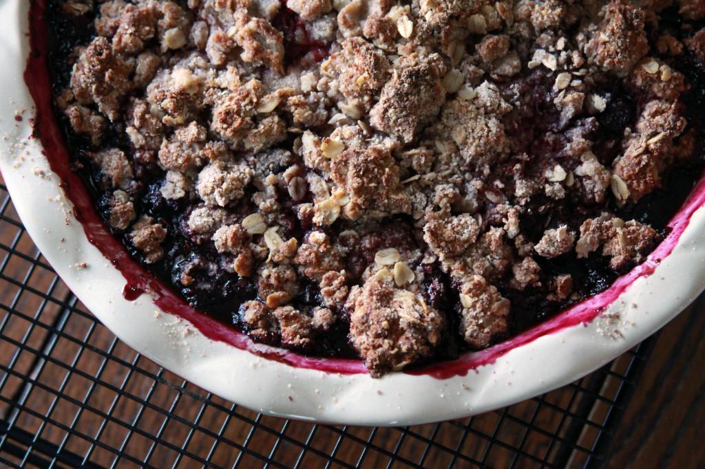 Blueberry_Oat_Biscuit_Cobbler_1